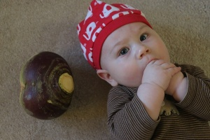 One of these things is a baby's head.  The other is a rutabaga.  Impressive.